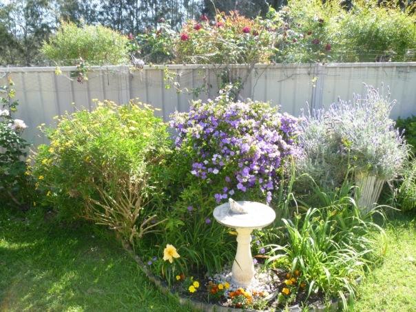 1411 Gills flowers1