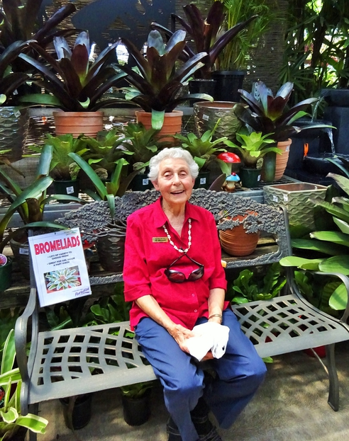 ….surrounded by Bromeliads