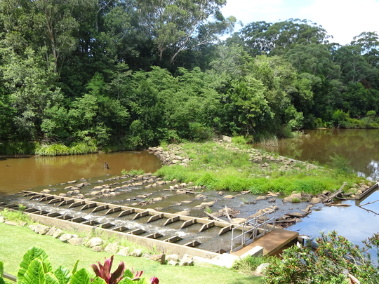 Fresh water is pumped upstream to a pumping station to be sent to Mardi Dam.