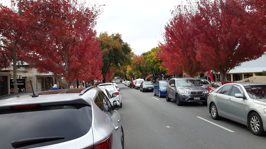 Early Autumn in Hahndorf