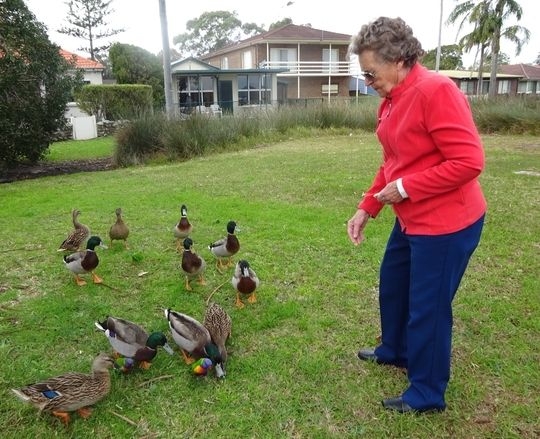 Local visitors in Lintern St Davistown