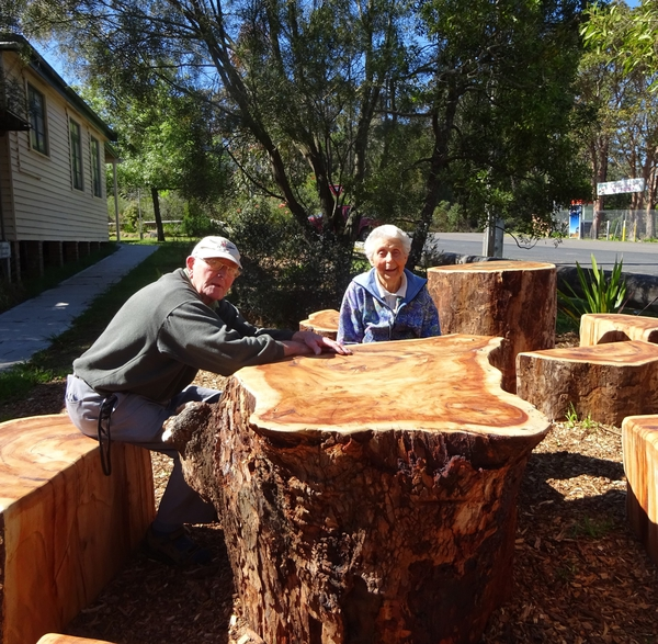 From Tree to Bush Furniture