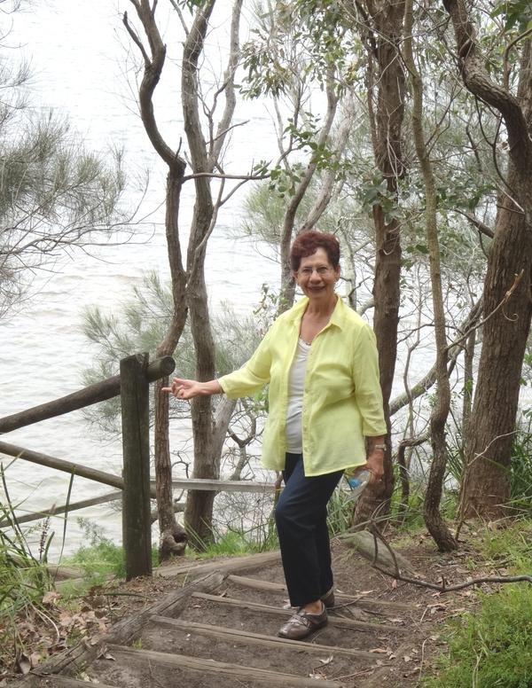 It's high tide in Brisbane Water