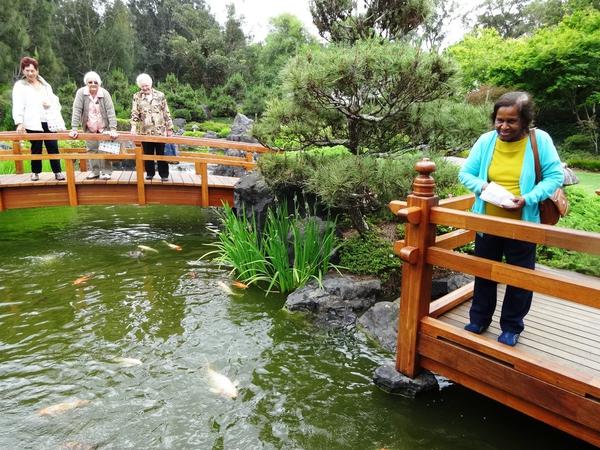 The Koi Pavilion and Lotus Pond